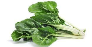 Mangold - Podobný šalátu + vitamíny, recepty i pestovanie ...