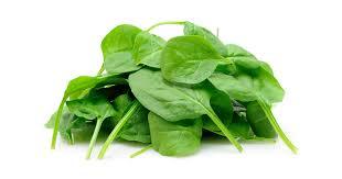 Špenát - 10 účinkov na zdravie   Zdravopedia